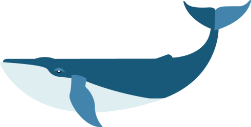 Download Flat Blue Whale PNG Image with No Background PNGkey com