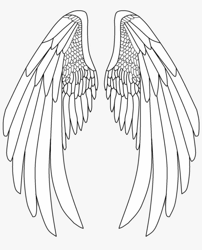 Angel Anime Wings : angel, anime, wings, Royalty, Archangel, Drawing, Anime, Angel, Wings, 832x961, Download, PNGkit