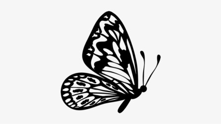 Flying Butterfly Outline Clipart Flying Butterfly Clipart Black And White 600x470 PNG Download PNGkit