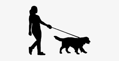 Walking Dog Women People Silhouette Silhouette Of Person Walking Dog 426x340 PNG Download PNGkit