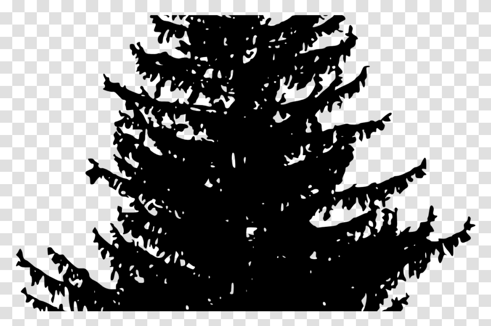 8,094 free images of forest path. Woods Clipart Download Redwood Forest Huge Freebie White Pine Tree Silhouette Gray World Of Warcraft Transparent Png Pngset Com