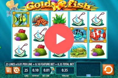 Oxicom | Aquaculture » Casino Roulette Playing Games Casino