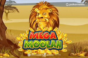 Is Platinum Reels Casino Legit | Don't Tell Aunty Slot