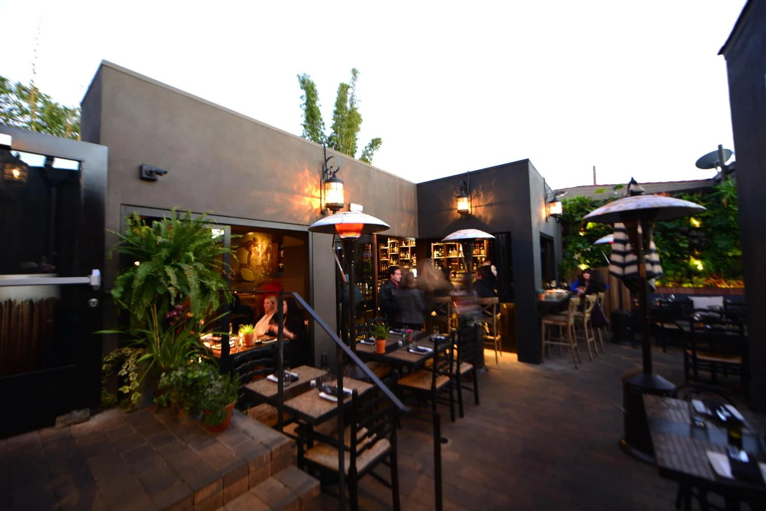 the patio on lamont oo d a