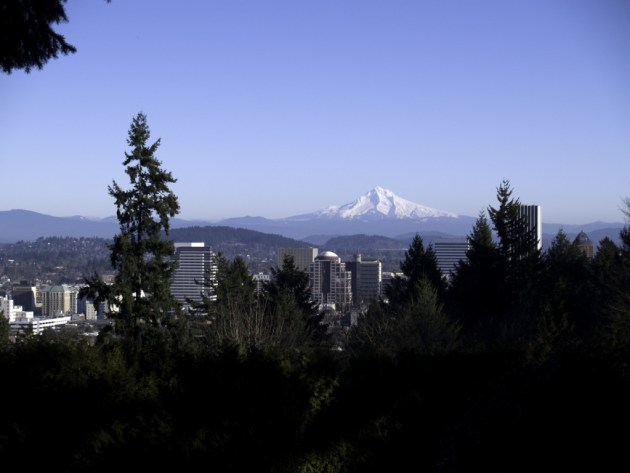 Mt. Hood from Rose Gardens, Portland OR