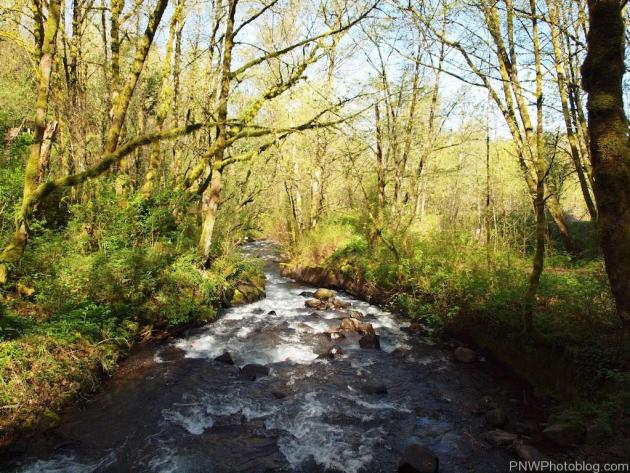 Bridal Veil River-small