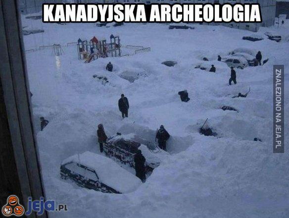 Archeolog 62+ Najlepszych Memów Jeja.pl
