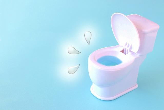 トイレ掃除の順番【壁→床→便器】の順番で清潔なトイレにする方法