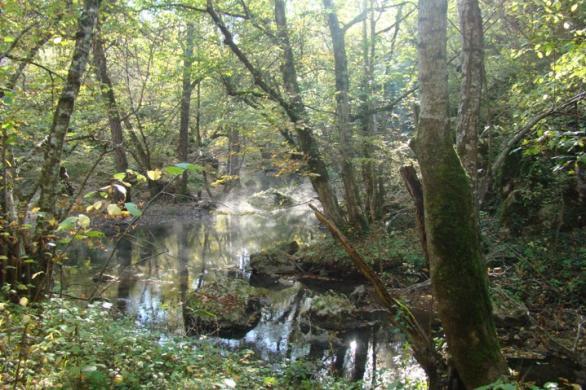 Странджа - Изворите на река Младежка