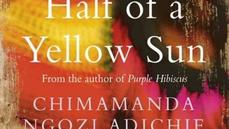 Resenha de Livro   Meio Sol Amarelo