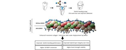 Dentin bond optimization using the dimethyl sulfoxide-wet