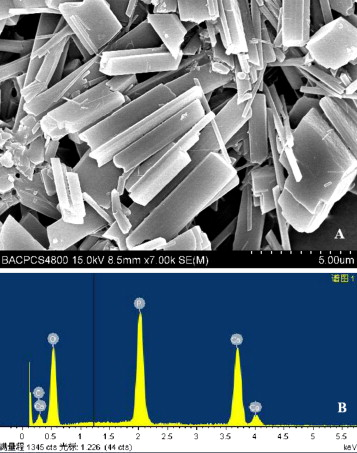 A case of destructive calcium pyrophosphate dihydrate crystal