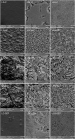Effect of different surface treatments on the biaxial flexure strength, Weibull characteristics, roughness, and surface topography of bonded CAD/CAM silica-based ceramics