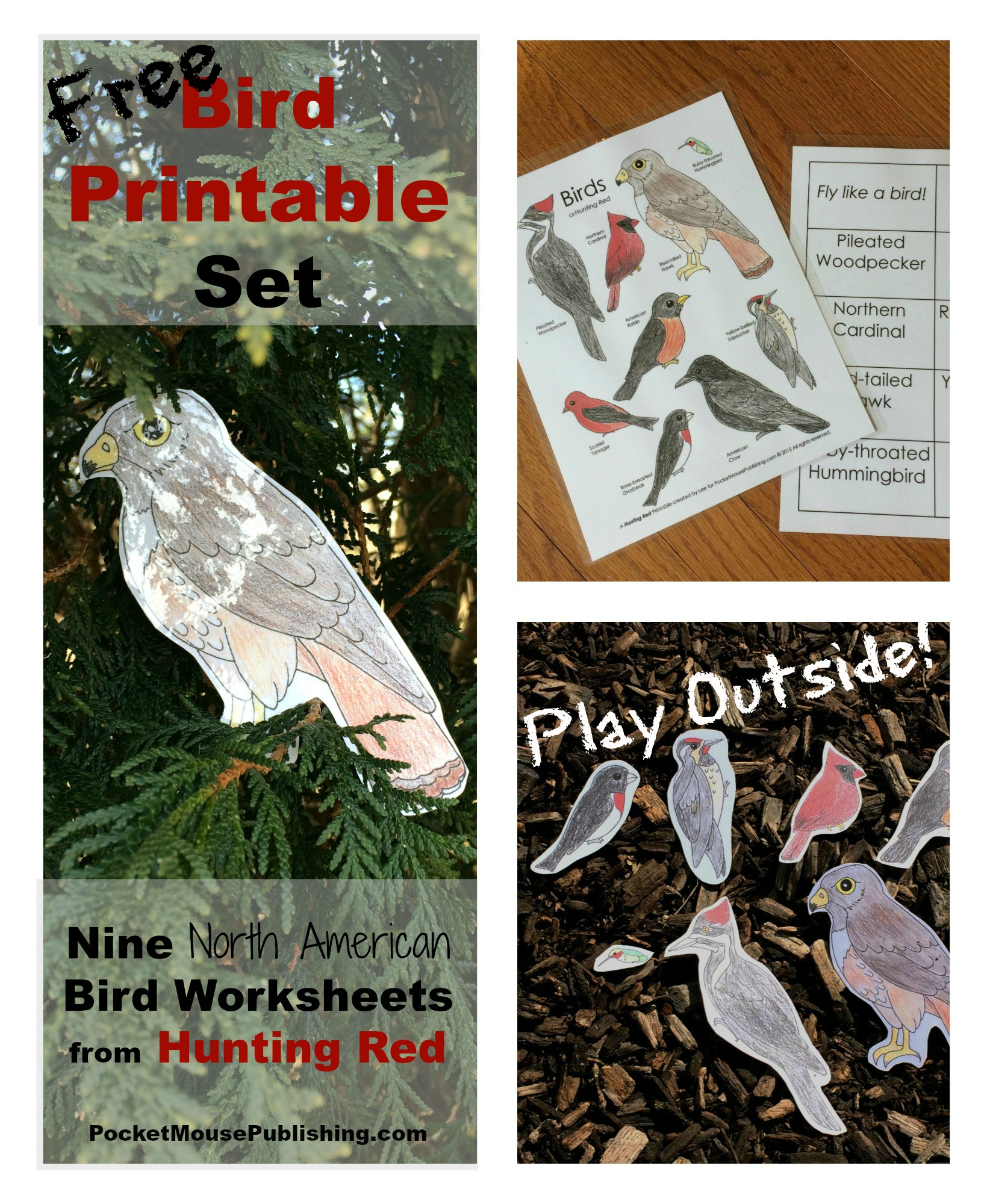 Free Bird Printable Set Of Hunting Red