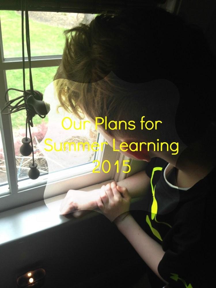 SummerLearning2015
