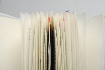 Dettaglio pagine