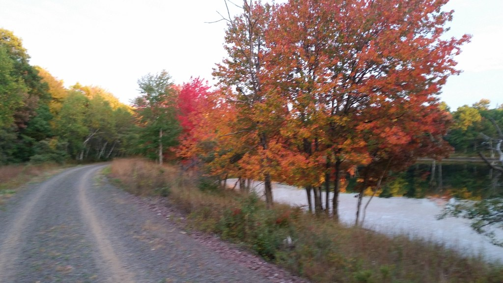 Glen Summit - D & L Black Diamond Rail Trail Fall Foliage Poconos - Pocono Bike Rental