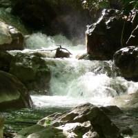 Whitewater Rafting, Biking, Hiking, Disc Golf