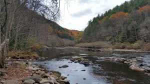 Lehigh River inside the Lehigh Gorge State Park during Fall Foliage Season