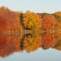 Poconos Fall Foliage Report 2019 - #5 - Lehigh Gorge Scenic Railway