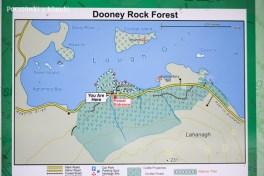 dooney rock 103
