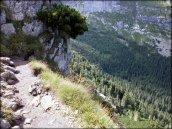Widok z góry na Dolinę Małej Łąki - lipiec 2012