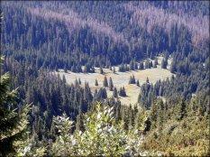 Widok z góry na Wyżnią Tomanową Polanę - sierpień 2012