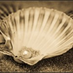 Une perle rare