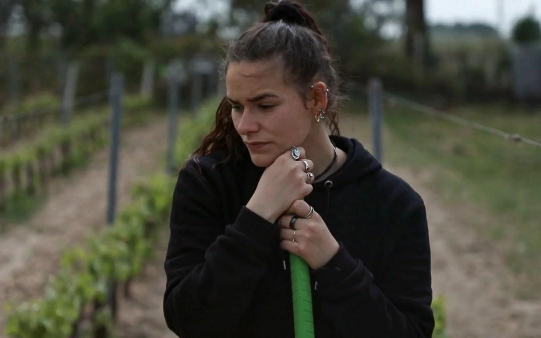 Jeunes agriculteurs, le champ des possibles