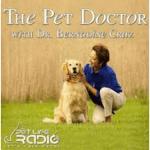 The Pet Doctor Podcast Pet Podcasts PodcastManiac.com