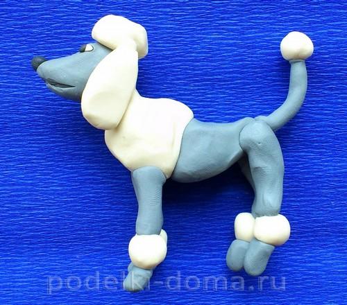 Plasticine09 থেকে কুকুর Poodle
