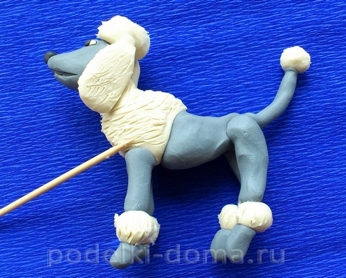Plasticine10 থেকে কুকুর Poodle