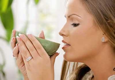 dicas de chás antioxidantes