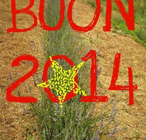 Buon 2014 !!