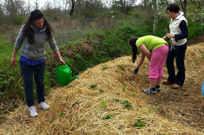 Costruisci il tuo orto…sinergico ! Corso base di agricoltura sinergica al Podere Argo
