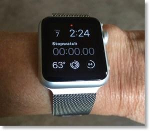 Milanese_Loop_Apple_Watch on my arm
