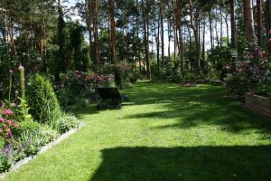 ogród Joli 3