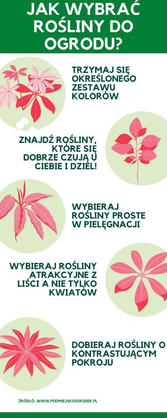 5 zasad dobierania roślin do ogrodu