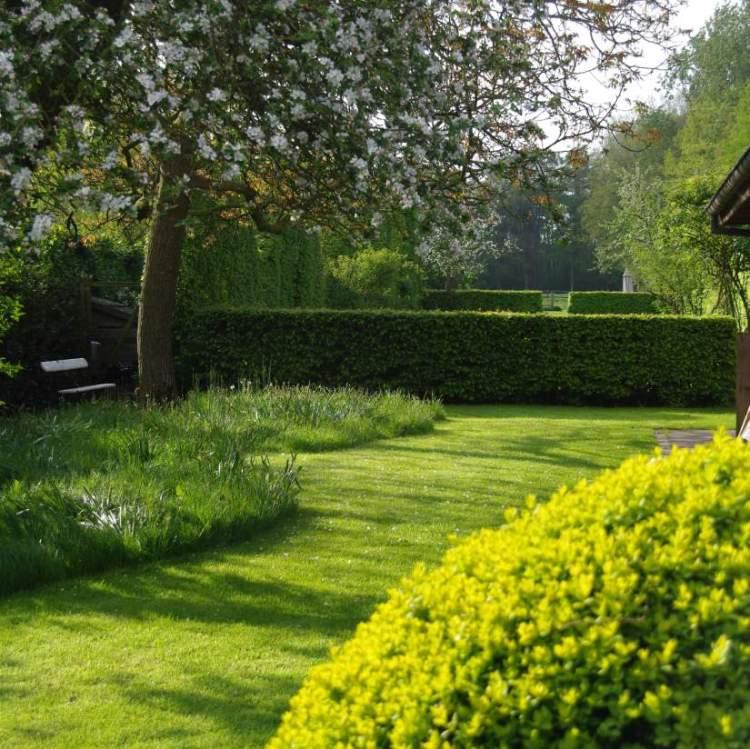 proj.: Chris Ghyselen; ogród wczesną wiosną