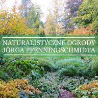 Naturalistyczny styl Jörga Pfenningschmidta
