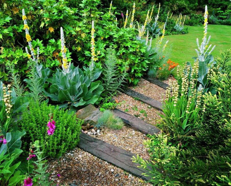 fot.: Clive Nichols; Denmans Garden
