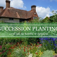 Succession planting by Christopher Lloyd