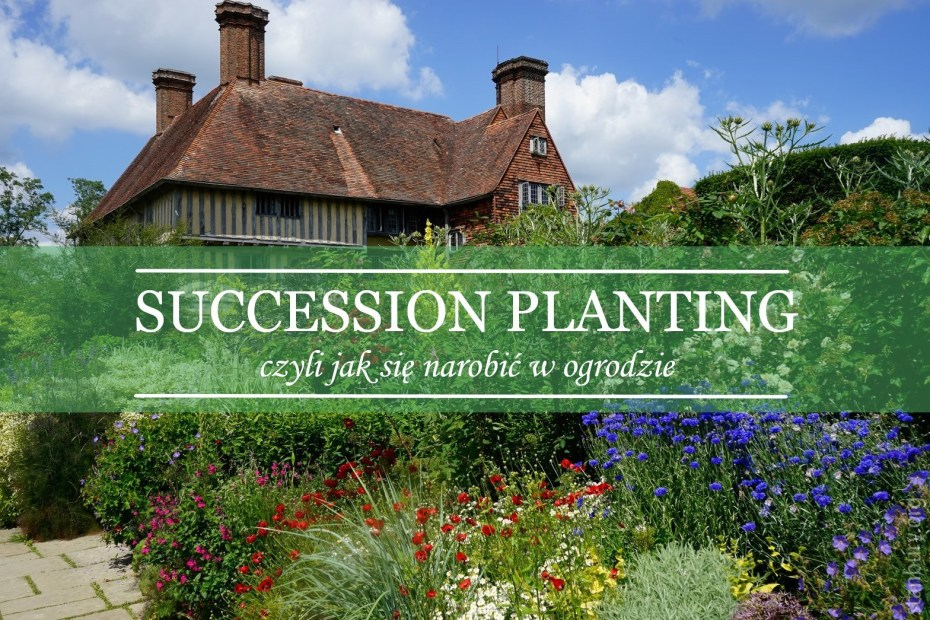 succession planting by Ch. Lloyd