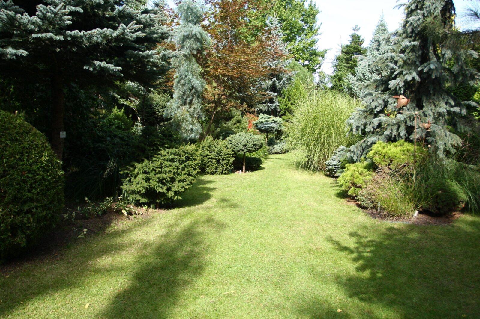 Arboretum Daglezja w Rykach