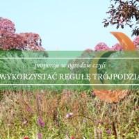 Proporcje w ogrodzie czyli jak wykorzystać regułę trójpodziału