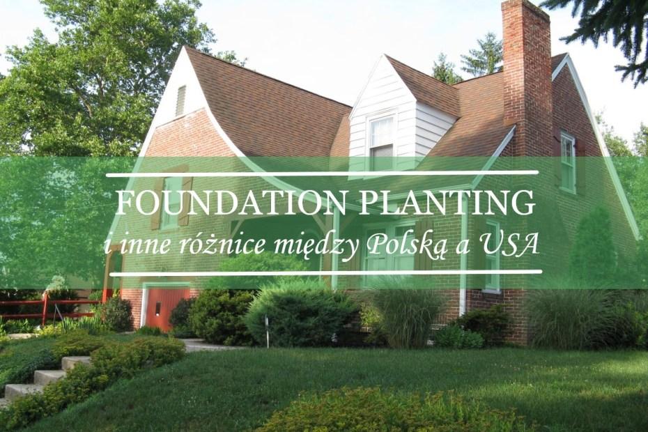 foundation planting