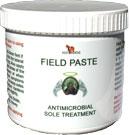 Fieldpaste-outline