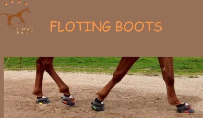 Foting 1
