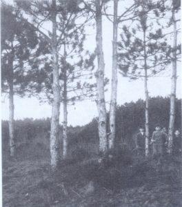 10 1930.