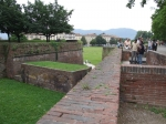 lucca-01